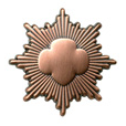 Girl Scout Bronze Award pin